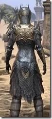 Renegade Dragon Priest Female Close Rear
