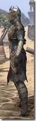 Renegade Dragon Priest Female Side
