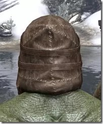 Renegade Dragon Priest Mask - Argonian Rear