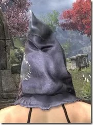 Scarecrow Spectre Mask - Dyed Rear