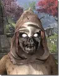Scarecrow Spectre Mask - Khajiit Front