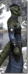 Ancestral Homage Formal Gown - Argonian Male Close Side