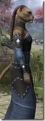 Ancestral Homage Formal Gown - Khajiit Female Close Side