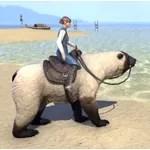 Atmoran Snow Bear