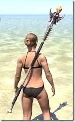 Dead-Water Staff 1