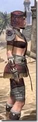 Elder Argonian Ancestor Silk - Female Shirt Close Side