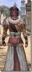 Elder Argonian Ancestor Silk - Male Robe Close Rear