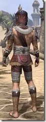Elder Argonian Ancestor Silk - Male Shirt Rear