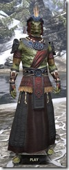 Elder Argonian - Argonian Male Robe Front