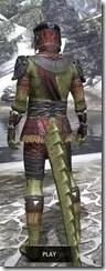 Elder Argonian - Argonian Male Shirt Rear
