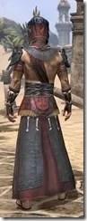 Elder Argonian - Male Robe Rear