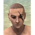 Hrokkibeg's Claw Face Marks