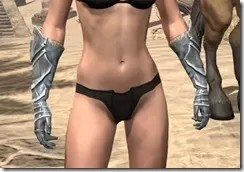 Silver Dawn Iron Gauntlets - Female Front