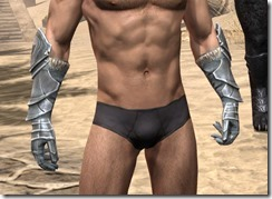 Silver Dawn Iron Gauntlets - Male Front