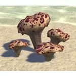 Toadstool, Bloodtooth Cluster