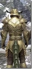 Auroran Knight Argonian Male Close Rear