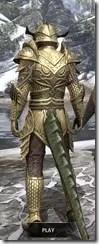 Auroran Knight Argonian Male Rear
