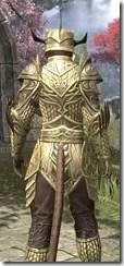Auroran Knight Khajiit Female Close Rear