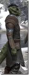 Austere Warden - Argonian Male Close Side
