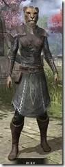 Austere Warden - Khajiit Female Front