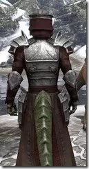 Battlemage Tribune Armor - Argonian Male Close Rear