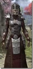 Battlemage Tribune Armor - Khajiit Female Close Front