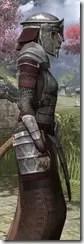 Battlemage Tribune Armor - Khajiit Female Close Side