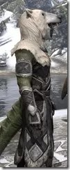 Cavalier of the Sworn Oath - Argonian Male Close Side