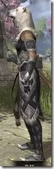 Cavalier of the Sworn Oath - Khajiit Female Side