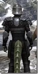 Centurion Field Armor - Argonian Male Close Rear