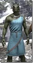 City Isle Tunic Dress - Argonian Male Close Front