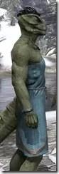 City Isle Tunic Dress - Argonian Male Close Side