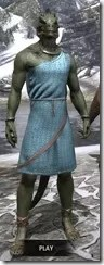 City Isle Tunic Dress - Argonian Male Front