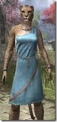 City Isle Tunic Dress - Khajiit Female Close Front