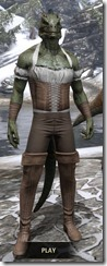Corseted Riding Outfit - Argonian Male Front