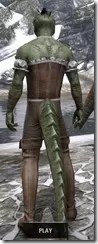 Corseted Riding Outfit - Argonian Male Rear