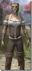 Corseted Riding Outfit - Khajiit Female Close Front