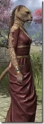 Cyrod Patrician Formal Gown - Khajiit Female Close Side