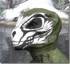 Floral Skull Face Tattoo Argonian Male Side