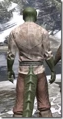 Forgotten-Adventurer-Argonian-Male-Close-Rear