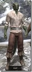 Forgotten-Adventurer-Argonian-Male-Front