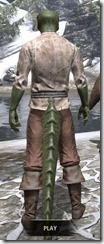 Forgotten-Adventurer-Argonian-Male-Rear