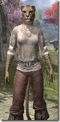 Forgotten-Adventurer-Khajiit-Female-Close-Front