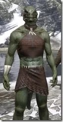 Graht-Climber's Active Wear - Argonian Male Close Front