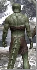 Graht-Climber's Active Wear - Argonian Male Close Rear