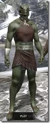 Graht-Climber's Active Wear - Argonian Male Front