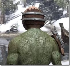 Grothdarr - Argonian Male Rear