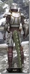 Lion Guard Elite - Argonian Male Rear