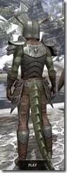 Nedic Perena Armor - Argonian Male Rear