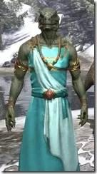 Nibenese Noble's Shawled Robe Argonian Male Close Front